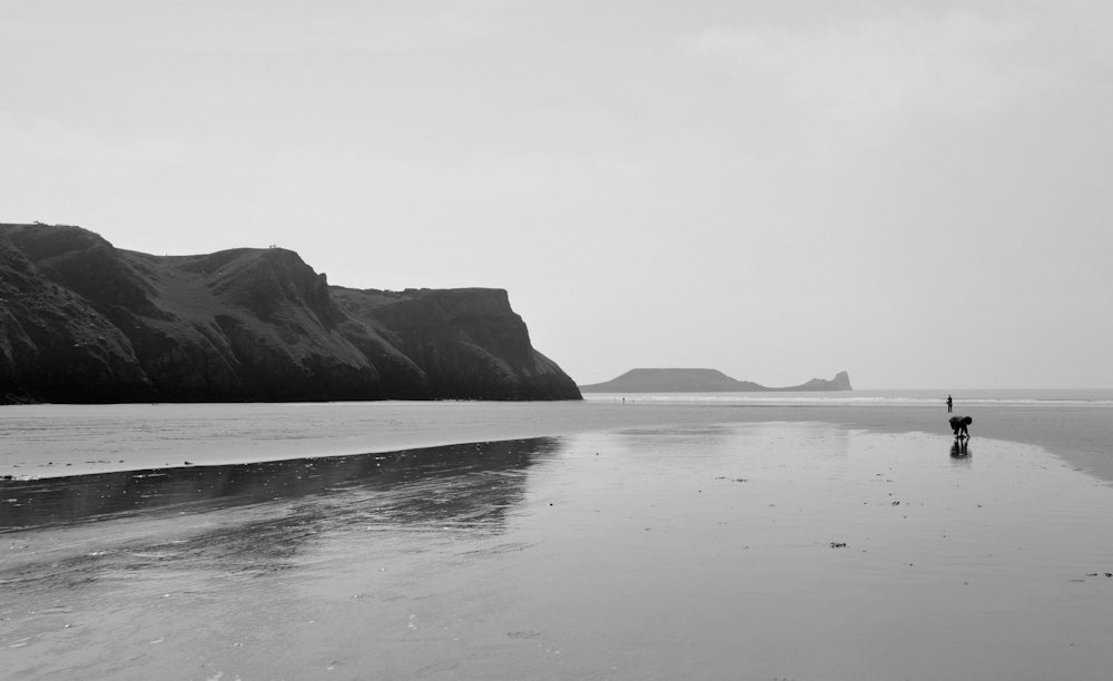 Rhosilli Gower (black and white)